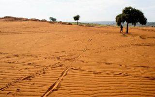 WMO: Hạn hán đã giết chết 650.000 người trên thế giới trong 50 năm qua
