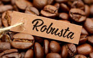 Cà phê Robusta vượt mốc 2.100 USD/tấn, giới đầu cơ thận trọng