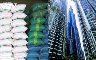 Tp Hồ Chí Minh: Thu hồi 22 tấn gạo hỗ trợ chung cư Vinhomes